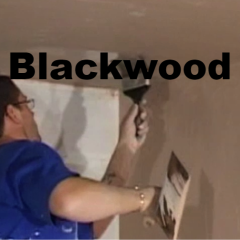 Plasterer Blackwood